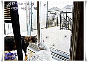 Sinek,Kedi,Köpek engelleme Sistemleri, MAVİ SİNEKLİK, 05322450078