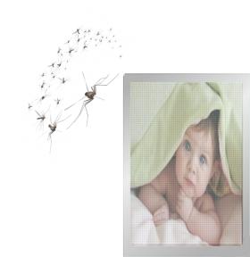 Mavi, Sineklik, 05322450078, kedi sineklik, sineklik, sineklikci